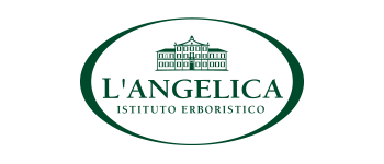 Logo L'Angelica